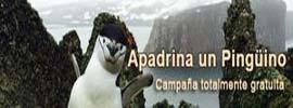 Base Gabriel de Castilla en Isla Decepción Web oficial de la base española Gabriel de Castilla
