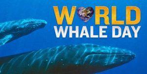 world whale day[4]
